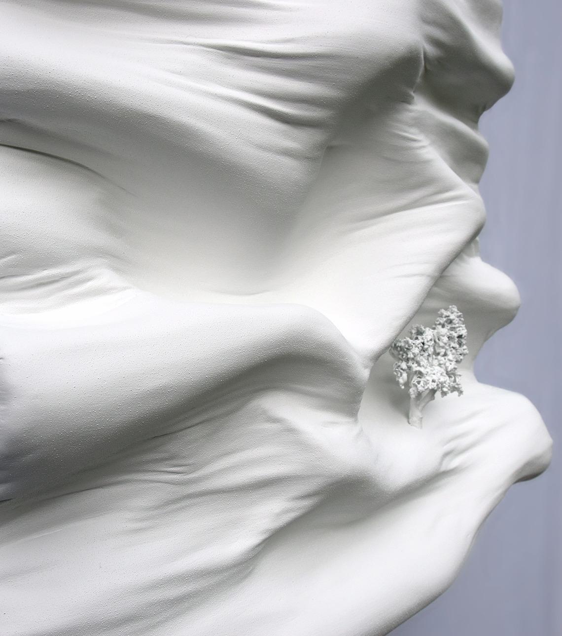 mouvement vague dune montagne blanc immaculé monochrome par Did Morères Bicom galerie Artiane